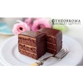 テオブロマ ケイクショコラ 2本セット 食品・調味料 スイーツ・スナック菓子 ケーキ・洋菓子 au WALLET Market