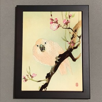 小原古邨 桃の花に鸚鵡(おうむ)フォトタイル木製フレーム付き