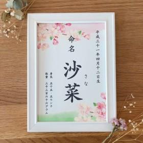 【フレーム付】桜の命名書