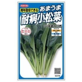 サカタのタネ あまうま耐病小松菜はまつづき