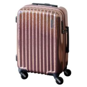 (Bag & Luggage SELECTION/カバンのセレクション)フリクエンター リフレクト スーツケース 機内持ち込み SSサイズ 拡張 33L-41L ストッパー FREQUENTER Reflect 1-311/ユニセックス ホワイト系1