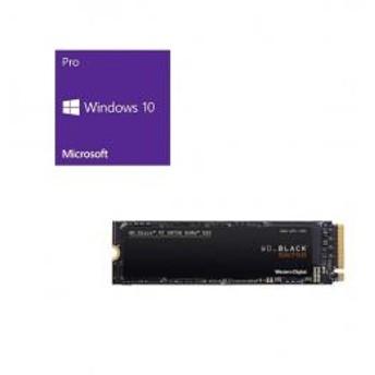 Windows 10 Pro 64Bit DSP + Western Digital WD Black NVMe SSD WDS250G3X0C バンドルセット