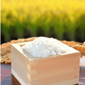 お米の定期便9.5kg×3回