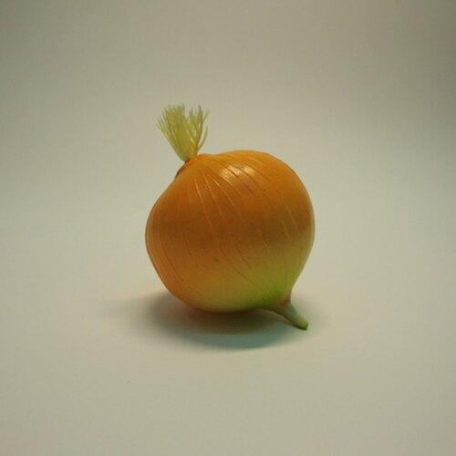 《食物模型》洋蔥 蔬菜模型 - B2007