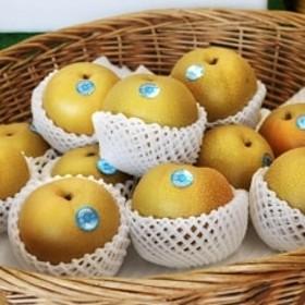 旬の美味しさをお届け!豊水(梨)たっぷり4kg(9~12玉)
