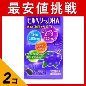 プレビジョン ビルベリー&DHA 120粒 2個セット  セット商品は配送料がお得! ≪ポスト投函での配送(送料450円一律)≫