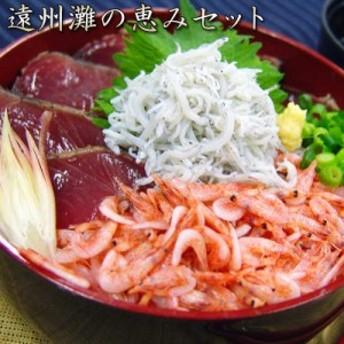 遠州灘の恵みセット まぐろ かつおたたき 桜えび ゆでしらす 海鮮 魚介 静岡