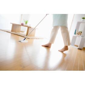 ペットや子どものいる家でも使える! おすすめの害虫対策6選