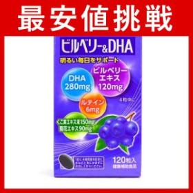 プレビジョン ビルベリー&DHA 120粒  ≪ポスト投函での配送(送料450円一律)≫
