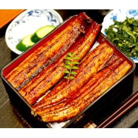 肉厚ふっくら美味しい 特大うなぎ蒲焼き120g~140g 3尾セット