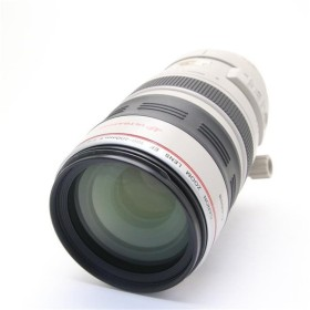 《難有品》Canon EF100-400mm F4.5-5.6L IS USM