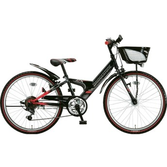 24型 子供用自転車 エクスプレス ジュニア(ブラック&レッド/6段変速)EXJ46T【点灯虫モデル】【2019年モデル】