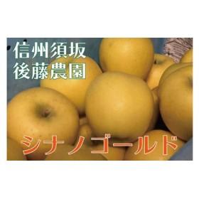 【後藤農園直送】大人気!シナノゴールド(りんご)約5kg(11~18玉入)