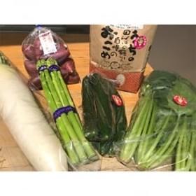 [阿蘇小国町]薬味野菜の里小国ふるさと野菜とお米2kgの詰め合わせ