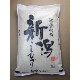 令和元年 新米 新潟県産コシヒカリ 5kg うるち米(精白米) コシヒカリ  母の日 プレゼント 実用的