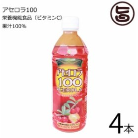 沖縄特産販売 アセロラ100 500ml×4本 果汁100% 沖縄 土産 人気 ドリンク 送料無料