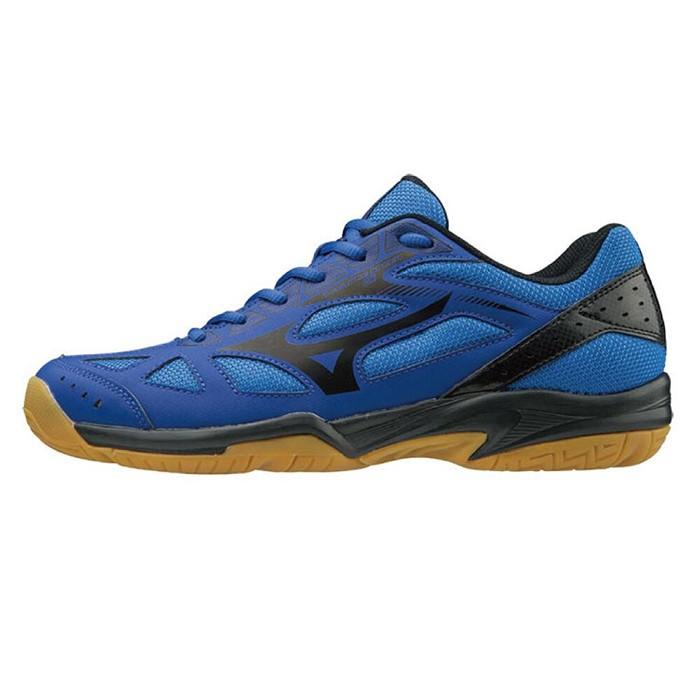 MIZUNO 19SS 入門款 男女排球鞋 CYCLONE SPEED系列 V1GA198009【樂買網】