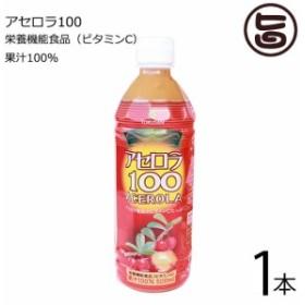 沖縄特産販売 アセロラ100 500ml×1本 果汁100% 沖縄 土産 人気 ドリンク 送料無料
