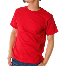 フルーツオブザルーム (FRUIT OF THE LOOM) 半袖Tシャツ メンズ クルーネック フルーツオブザルーム トップス カットソー 無地 白 黒 紺 グレー 赤 青 ピンク オレンジ 黄色 お洒落 ユニセックス