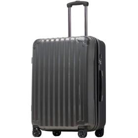 【JP Design】スーツケース キャリーケース キャリーバッグ 超軽量 tsaロック 容量アップ 拡張機能付 二枚仕切り ダブルキャスター8輪 Sサイズ ハードキャリー ファスナー (S, ガンメタリック/BK)
