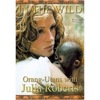 In the Wild [DVD] [Import](中古品)