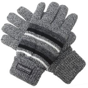 (エクサス)EXAS ボーダー柄紳士ニット手袋 グレー