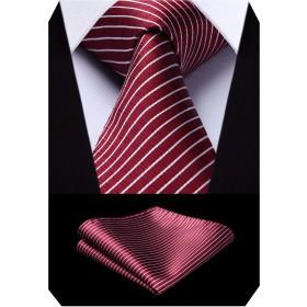 (ヒスデン) HISDERNメンズ ビジネス用 ネクタイ セット おしゃれ ストライプ 赤/白 シルク ネクタイ チーフ セット 結婚式 就活 プレゼント