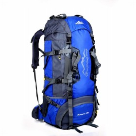 Phoenix Ikki 80L 多機能 大容量 長期旅行 海外旅行 プロ 登山ザック リュックサック バックパック レインカバー付き インナーフレーム付き ブルー