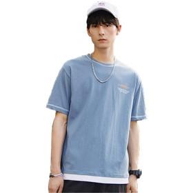 Hisitosa 夏服 メンズ Tシャツ 半袖 おおきいサイズ 綿100% 快適な吸汗 涼しいカジュアル メンズ 服 (ブルー, XXL)