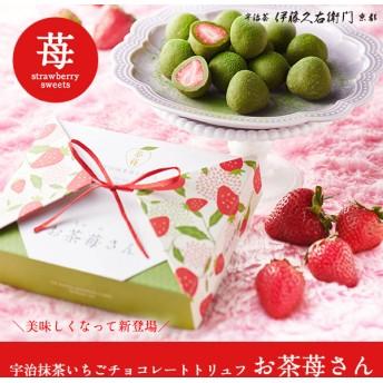 宇治抹茶いちごチョコレートトリュフ お茶苺さん ストロベリーチョコ 苺