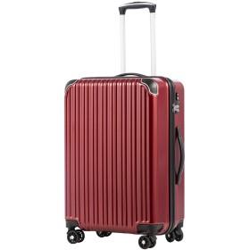[クールライフ] COOLIFE スーツケース キャリーバッグダブルキャスター 二年安心保証 機内持込 ファスナー式 人気色 超軽量 TSAローク (M サイズ(24in), ワイン)