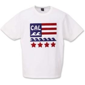 (シェルティ) SHELTY 大きいサイズ 星条旗サガラ刺繍半袖Tシャツ 5L オフホワイト