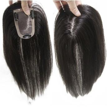Remeehiヘアピース 部分ウィッグ 人毛100%ウィッグ 7cm×10cm つけ毛 増毛部分かつら 白髪隠れ 通気性よく ポイントウィッグ 自然黒 25cm