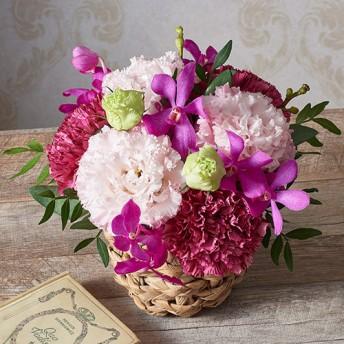 【日比谷花壇】アレンジメント「8月の旬の花 ラフィット」