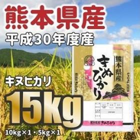 <W042平成30年度産★熊本県産キヌヒカリ 大容量15kg