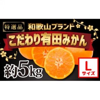【こだわり】有田みかん 5kg(Lサイズ指定)