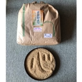 【令和元年産新米】さがびより(玄米)15kg
