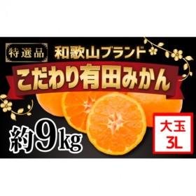 【こだわり】有田みかん たっぷり10kg(2L~3Lサイズ指定)