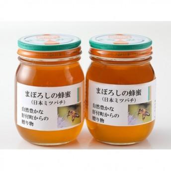 【B51001】日本ミツバチ蜂蜜