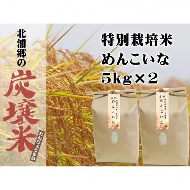 早期受付開始!!【炭壌米 めんこいな】元年産 白米 5kg×2袋(合計:10kg)