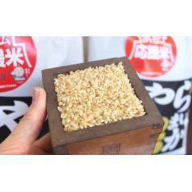 【令和元年産】新米 特別栽培米 浜松応援米やら米か 玄米20kg