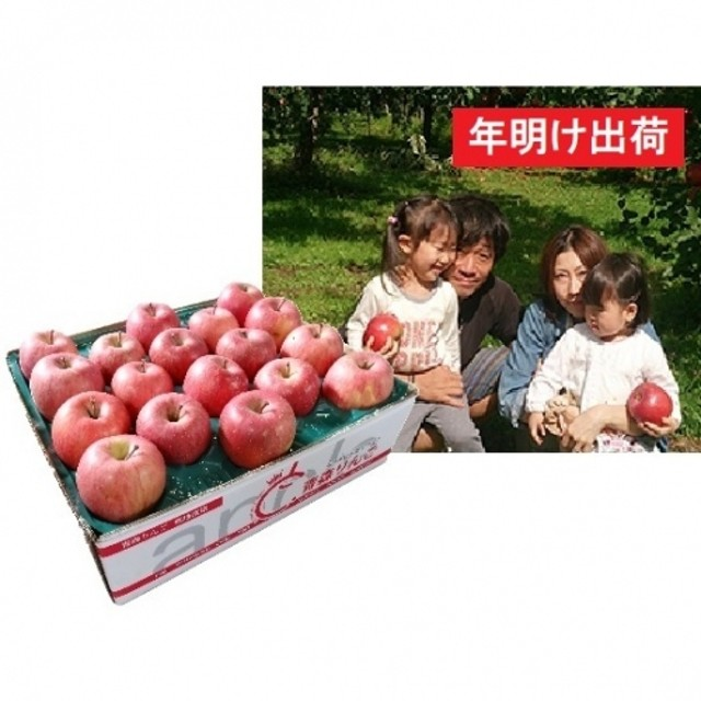 【年明け】須藤農園のサンふじ家庭用約5kg