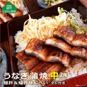 73-02_うなぎ蒲焼(中)2尾