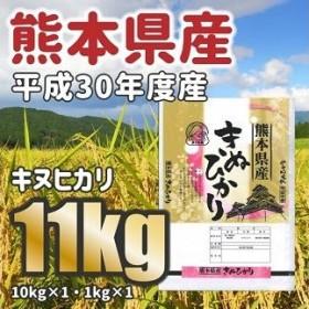 <W041平成30年度産★熊本県産キヌヒカリ 大容量11kg