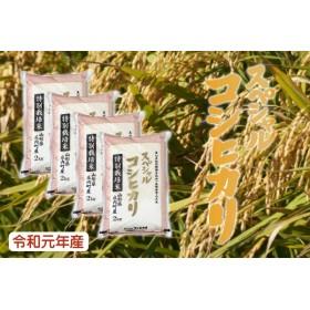 令和元年庄内町産スペシャルコシヒカリ(11月中旬以降発送)(5kg(5kg×1袋))