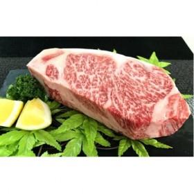 D-326 【佐賀産和牛】ロースブロック(タタキ・ローストビーフ・焼肉等)500g