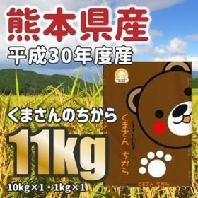 <W040平成30年度産★熊本県産くまさんの力 大容量11kg