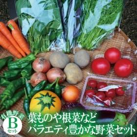 017002. 【有機JAS認定サラダ野菜】西田農園 季節の野菜詰合せ Bセット
