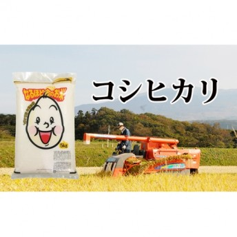 コシヒカリ白米10kg(5kg×2)
