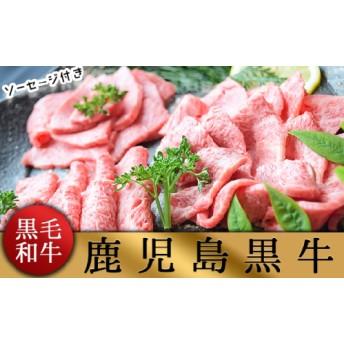 b5-061 【鹿児島黒毛和牛・黒豚】お家でいただく極上焼肉セット